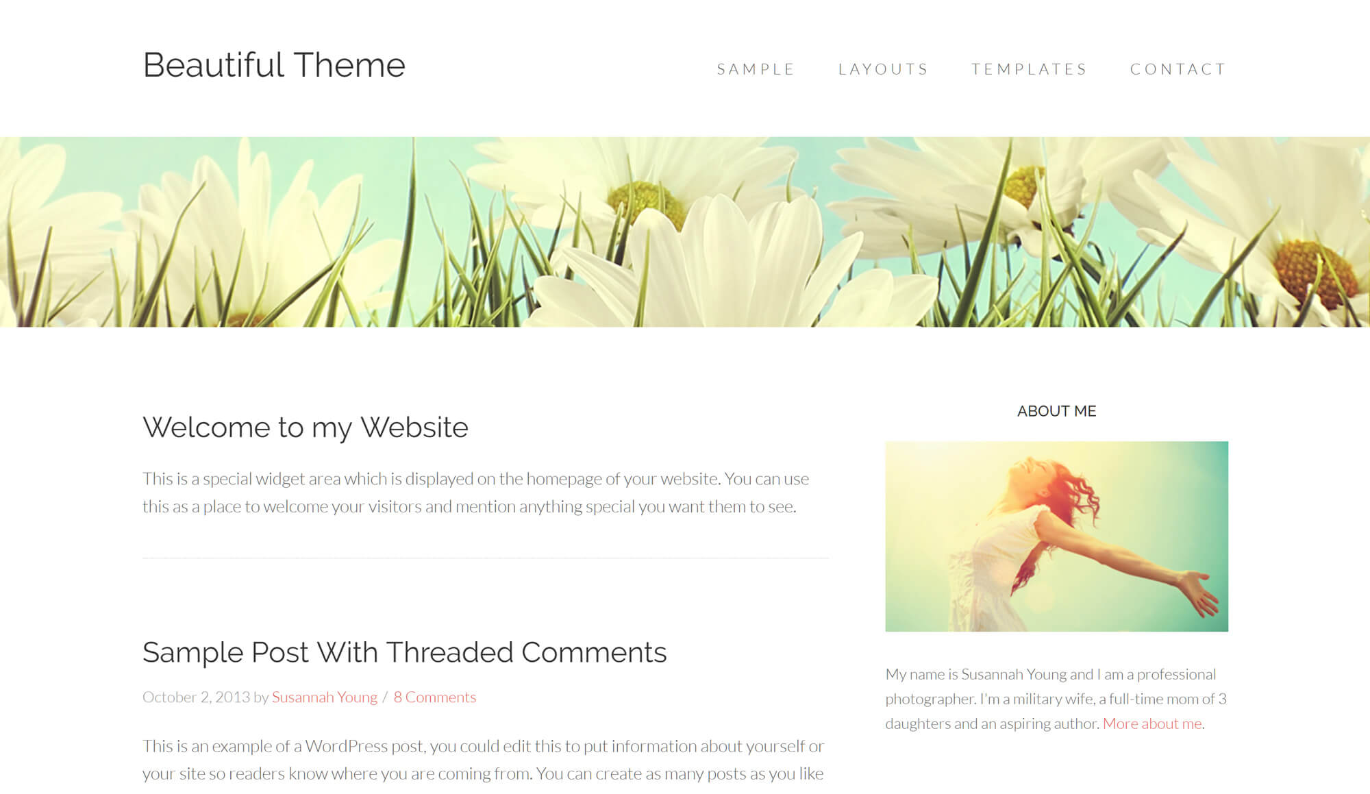 Beautiful Pro WordPress Theme