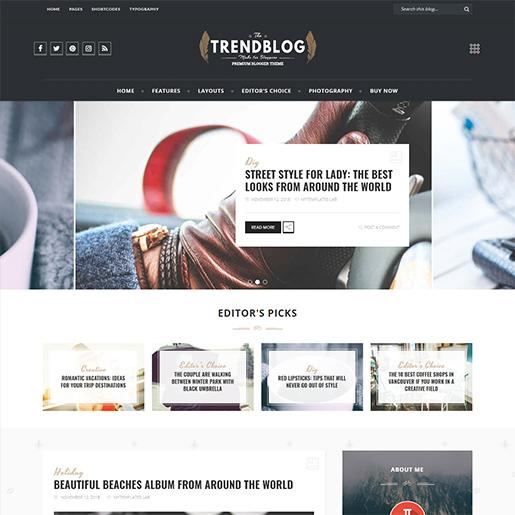 Retro WordPress Theme- Trendblog