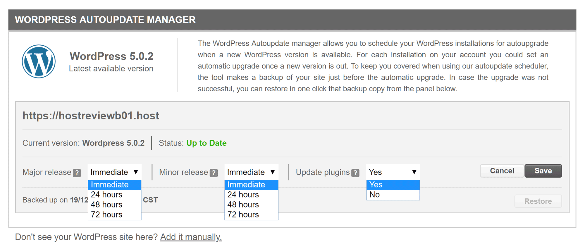 WordPress Auto update Manager