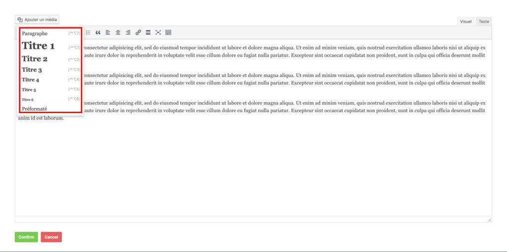 Les balises hn de l'éditeur de texte WordPress