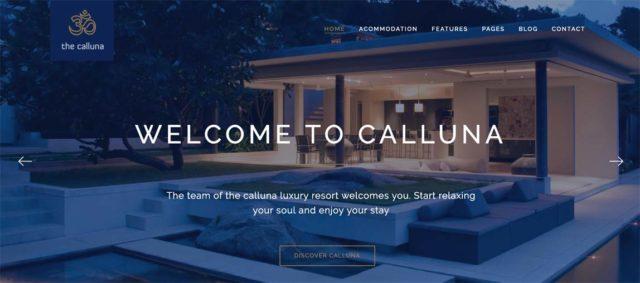 Homepage du thème Callluna