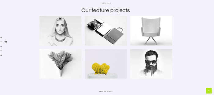 A snapshot of projects section of the website